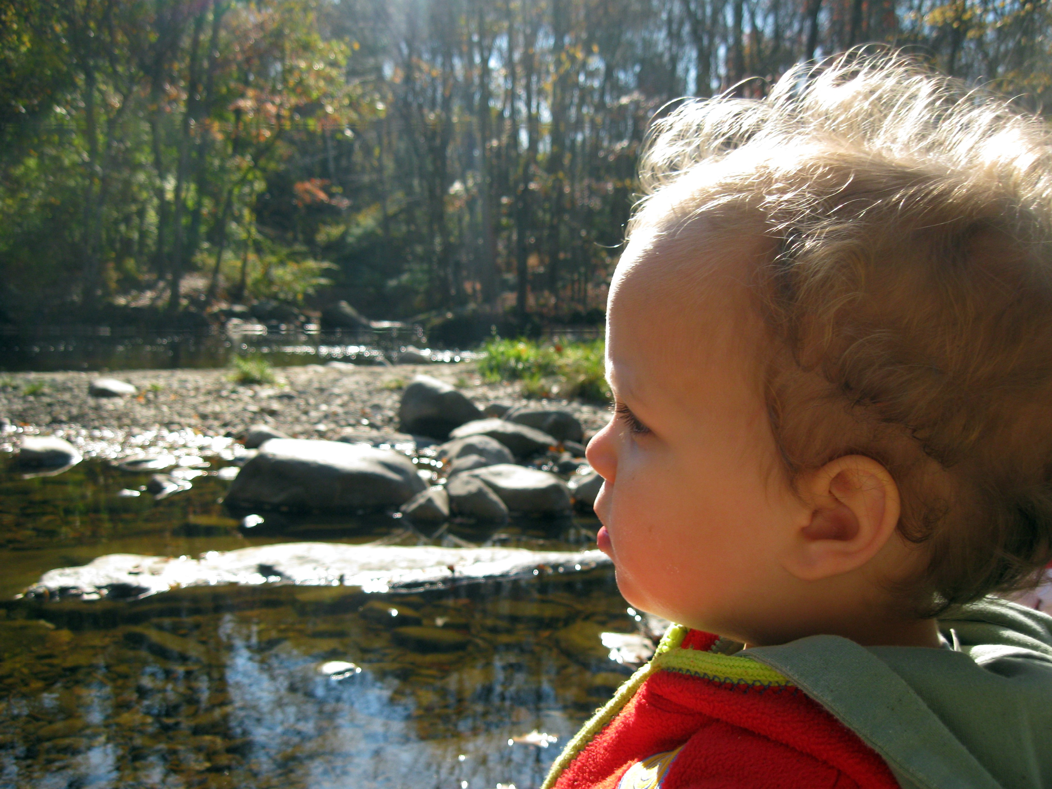looking around the river